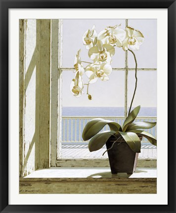 Framed Flower In Window Print