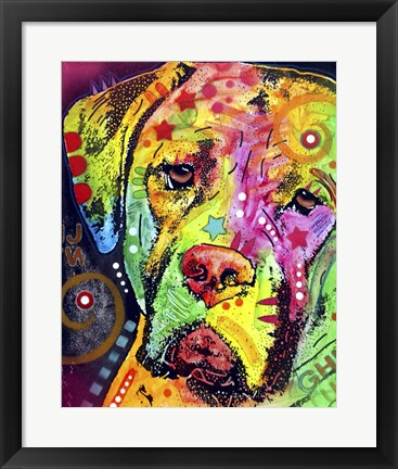 Framed Mastiff Print