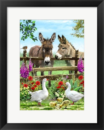 Framed Donkeys Print
