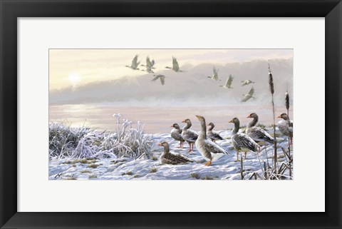 Framed Winter River Geese Print