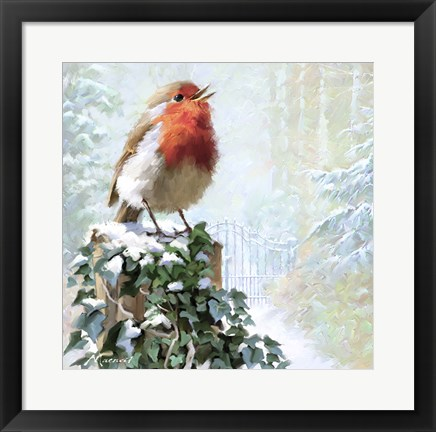 Framed Robin On Ivy Print