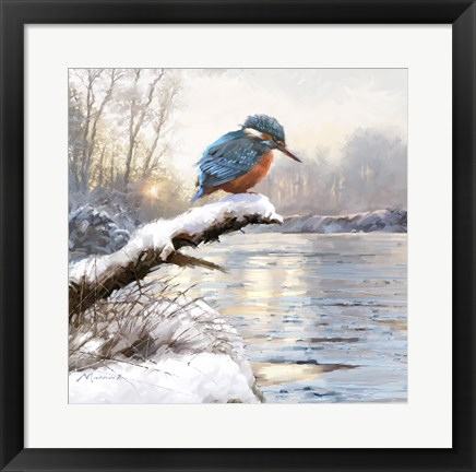 Framed Winter Kingfisher Print