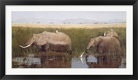 Framed Gentle Giants Print