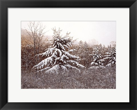 Framed First Snow Print