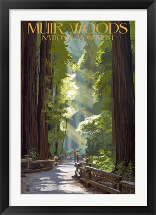 Framed Muir Woods National Monument Print