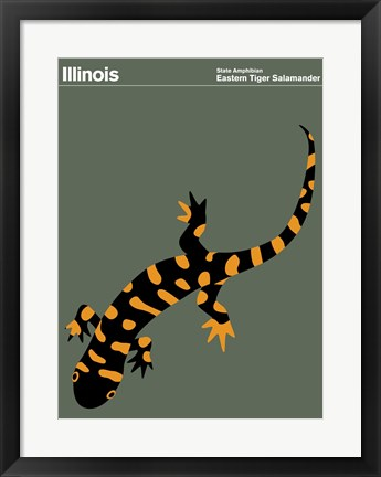 Framed Montague State Posters - Illinois Print