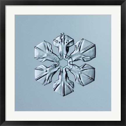 Framed Sectored Plate Snowflake 001.3.02.2014 Print