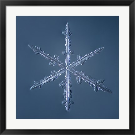 Framed Simple Star Snowflake 002.2.16 Print