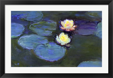 Framed Water Lily Detail Blur Print
