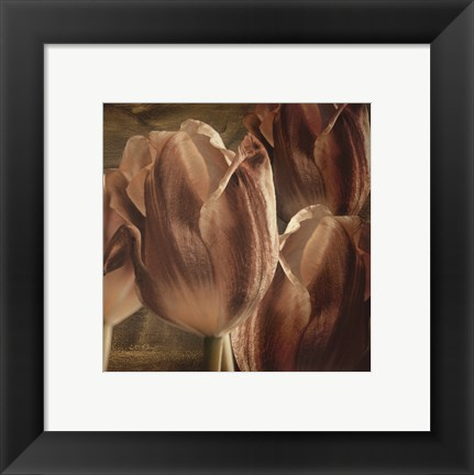 Framed Copper Tulips Print