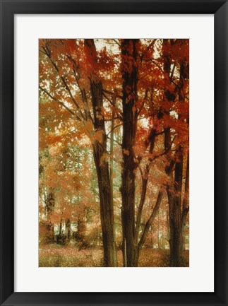 Framed Red Forest Print