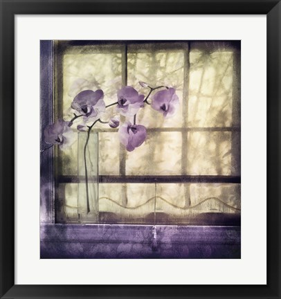 Framed Window Orchids Print