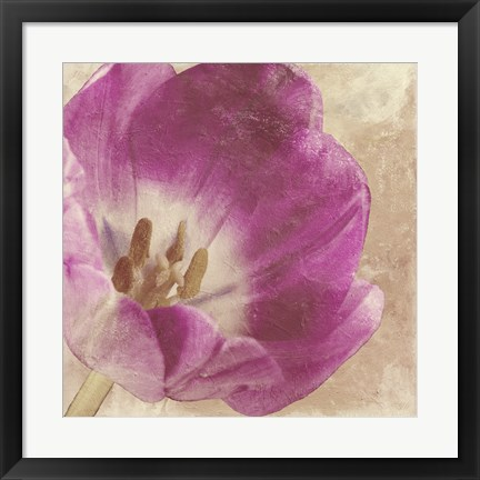 Framed Buttercream Tulip 1I Print