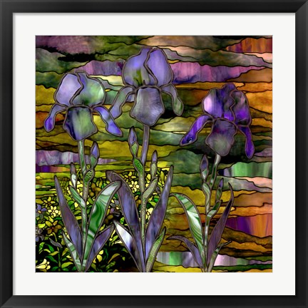 Framed Sunset Irises Print