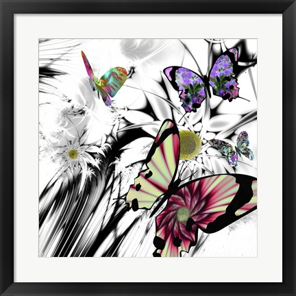 Framed Black and White Daisies Print