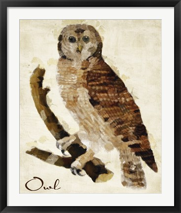 Framed Brown Owl Print