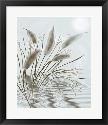 Framed Mourning Willow Pond Print