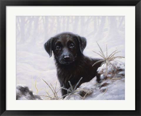 Framed In the Snow Print