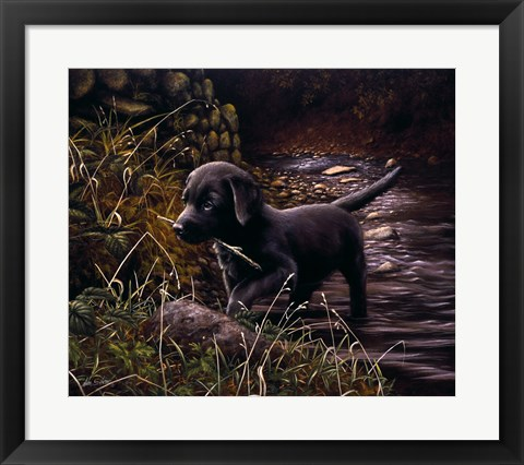 Framed By the Creek Print