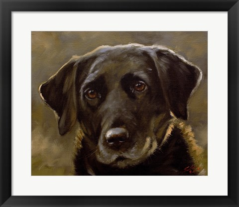 Framed Black Lab 3 Print
