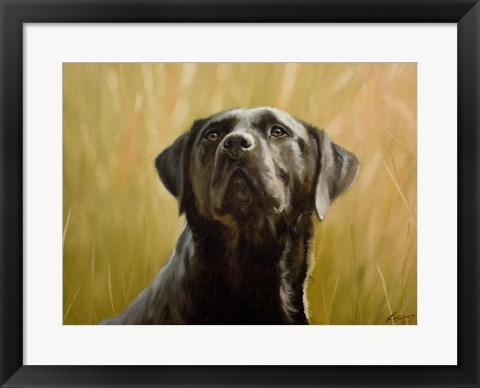 Framed Black Lab 12 Print