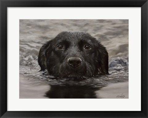 Framed Black Lab 20 Print