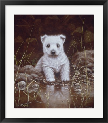 Framed Puppy 1 Print