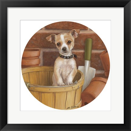 Framed Chihuahua In Basket Print