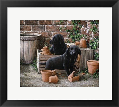 Framed Among the Flower Pots Print