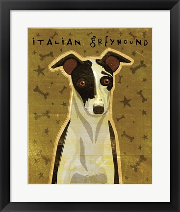 Framed Italian Greyhound - Black and White Print