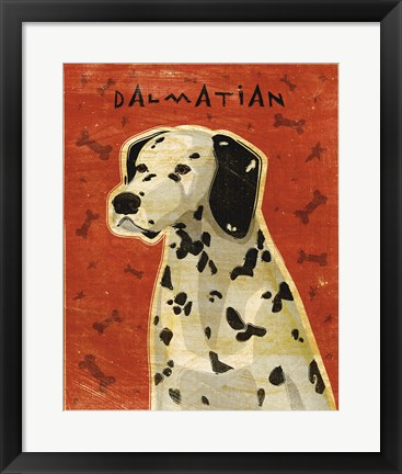 Framed Dalmation Print