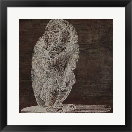 Framed Monkey Print