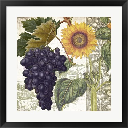 Framed Dolcetto I Print
