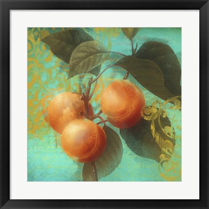 Framed Glowing Fruits II Print