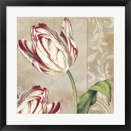Framed Peppermint Tulips I Print