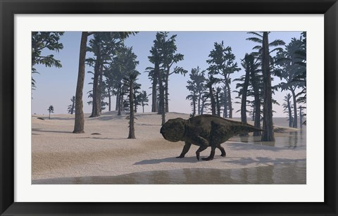 Framed Udanoceratops Walking Along Water Print