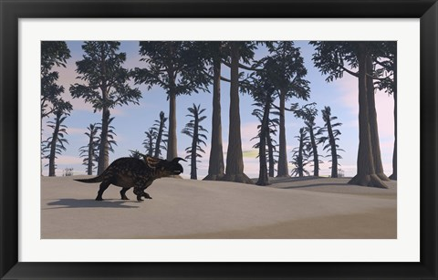 Framed Brown Einiosaurus Roaming Print
