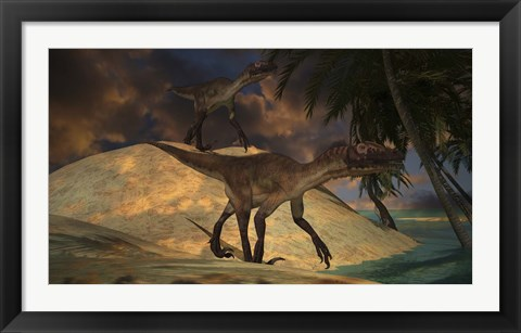 Framed Pair of Utahraptors Print