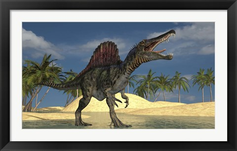 Framed Spinosaurus Hunting for its Next Meal Print