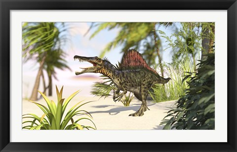 Framed Spinosaurus Hunting for Meal Print