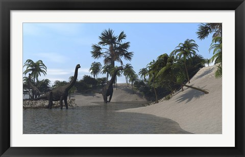 Framed Three Brachiosaurus Dinosaurs Grazing Print