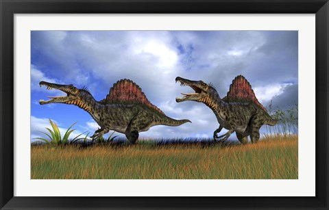 Framed Two Spinosaurus Hunting Print
