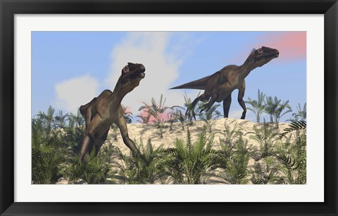 Framed Two Utahraptors Print