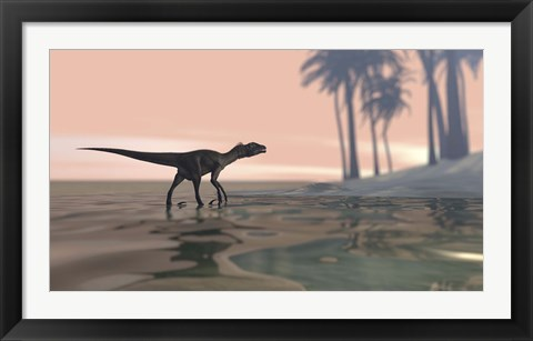 Framed Utahraptor in Shallow Water Print