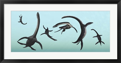 Framed Plesiosaurs Gather Underwater Print