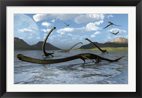 Framed Illustration of Tanystropheus Reptiles Print