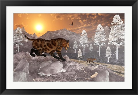 Framed Sabre Tooth Tigers in Winter Print