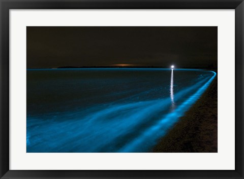 Framed Bioluminescence in Waves in the Gippsland Lakes Print