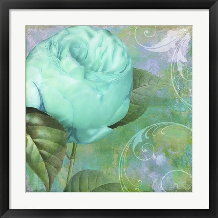 Framed Aqua Rose I Print