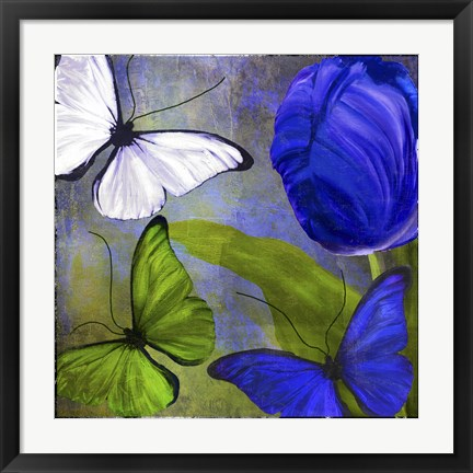 Framed Morphos Two Print